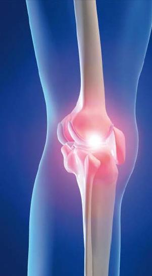Incontro con i colleghi medici sulle patologie dell'articolazione femoro-rotulea