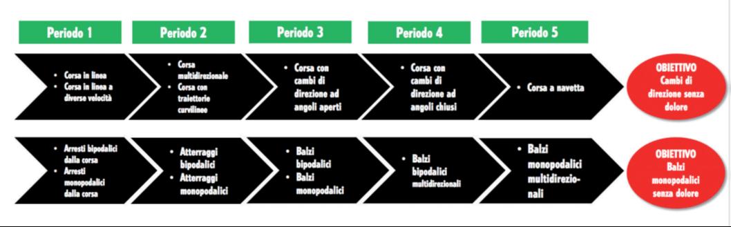 Femoro rotulea-articolo Pisoni fisioterapista in Isokinetic Milano